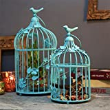 Turquoise Bird Cage with floral vine (Se...