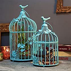 Turquoise Bird Cage with floral vine (Set of 2)