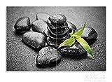 Wallario Herdabdeckplatte / Spritzschutz aus Glas, 2-teilig, 80x52cm, für Ceran- und Induktionsherde, Motiv Bambustrieb auf schwarzen Steinen, benetzt mit Wasser-Tropfen -