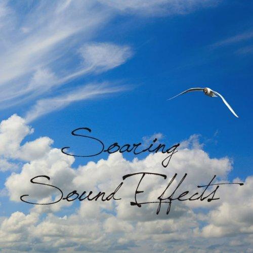 Air Traffic Controller - Nordo Mp3 Album Download