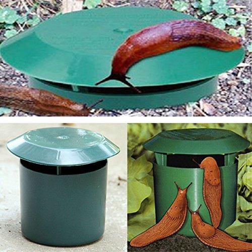 bluelover-jardin-potager-escargot-sans-danger-piege-physique-environnementale-limax-escargot-slug-tr