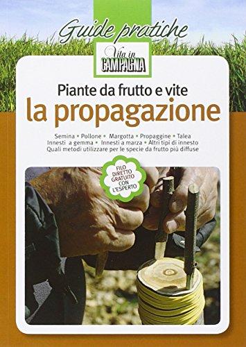 Zoom IMG-2 piante da frutto e vite
