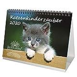 Katzenkinderzauber DIN A5 Tischkalender 2020 Katzenkinder Katzenbabys - Seelenzauber