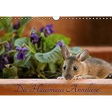 Die Hausmaus Anneliese (Wandkalender 2017 DIN A4 quer): Anneliese, eine ganz besondere Hausmaus (Monatskalender, 14 Seiten) (CALVENDO Tiere)