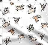 Schwein, Fliegende Schweine, Bauernhof, Stern, Sterne, Tara