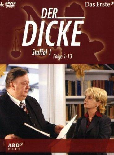 Staffel 1/Folgen 01-13 (4 DVDs)
