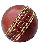 BSM-test-cricket-ball