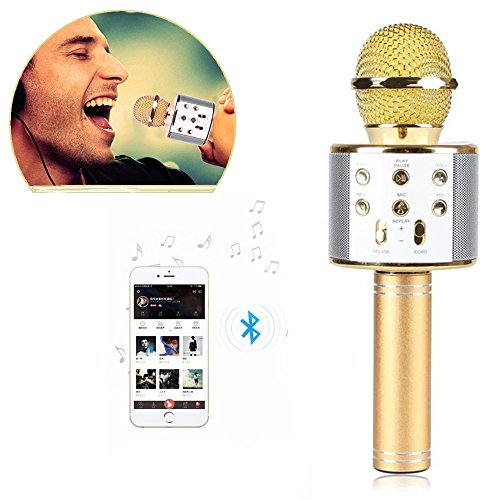 IndiaTeq™, WS-858 Wireless Karaoke Mic with Built in Speakers for Singing Party Dancing Portable Multi-Function Bluetooth Microphone for All Android and iOS Devices (Assorted Color)