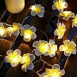 ELINKUME® LED Blumen Lichterkette, 20er Gelb Ei-Blume, 2 Meter Kabel Batteriebetriebene, Hochzeits Garten Weihnachtsdekor
