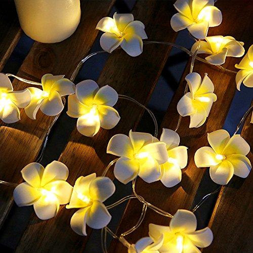 ELINKUME® LED Blumen Lichterkette, 20er Gelb Ei-Blume, 2 Meter Kabel Batteriebetriebene, Hochzeits Garten Weihnachtsdekor -