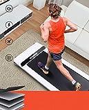 Die besten Laufband Schreibtische - LONTEK Laufband Schreibtischlaufband leicht unter Schreibtisch im Büro Bewertungen