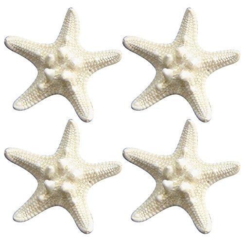 4 Pcs Épingles à Cheveux Pinces à Cheveux Naturelles Starfish Style