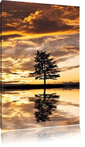 Pixxprint Insel im Meer Baum Sonnenaufgang Steine, Format: 100x70 auf Leinwand -