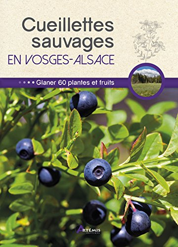 Cueillettes sauvages en Vosges-Alsace : 60 plantes et fruits à glaner