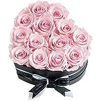 Infinity Flowerbox 5-BB-BP Infinity Herzbox, Rosa