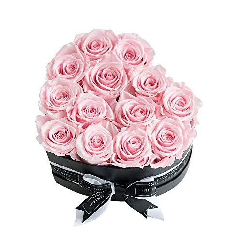Infinity Flowerbox 5-BB-BP