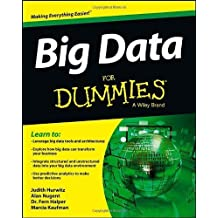 Big Data For Dummies by Judith Hurwitz (2013-04-19)