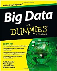 Big Data For Dummies by Hurwitz, Nugent, Alan, Halper, Fern, Kaufman, Marcia (2013) Paperback