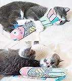 Katzenminze Fisch Katzenspielzeug Katzen Interaktives Spielzeug Kissen mit Katzenminze Catnip