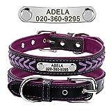 Berry Gepolstertes Hundehalsband aus Echtleder, personalisierbar, sichere Passform, Halsband mit Namen, rot/schwarz/pink, lila, gelb, XS, S, M, L, XL