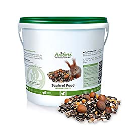 AniForte Squirrel Food Mix 1kg - Pure Natural Feed for Squirrels, Chipmunks & Wild Birds, Sunflower Seeds, Hazelnuts, Rosehips, Cedar nuts, Raisins