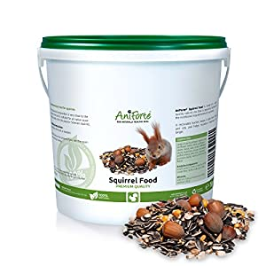 Squirrel Food Mix 1kg by AniForte - 100% Natural Feed for Squirrels, Chipmunks & Wild Birds | Sunflower Seeds, Hazelnuts, Rosehips, Cedar nuts, Raisins