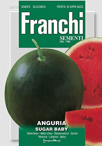 Obstsamen - Wassermelone Sugar Baby von Franchi Sementi