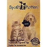 Spoilt Rotten Pets ratón forma ID Tag de gato gato o. Azul Eléctrico–Tradicionalmente & profundamente grabado en ambos lados con nombre y número de teléfono