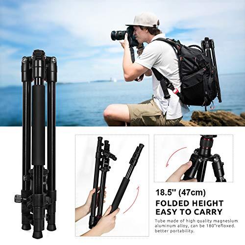 Trípode Cámara -  ESDDI Trípode 162cm Aleación de Aluminio para Cámara Reflex con Rótula de Bola 360 Grados y Monopie para Canon Nikon Sony Samsung Olympus Panasonic Pentax