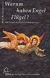 Warum haben Engel Flügel?: Der Engel als Bild und Begegnung (Falter)