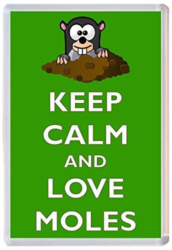 keep-calm-and-love-moles-jumbo-fridge-magnet-brand-new-gift-present-souvenir