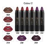 Liquid Lipstick,EUZeo 6Pcs Matt bleistift langlebiger Samt Farbe Zeichenstift-Verfassung Satz des lippenstift (B)