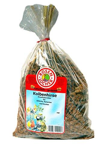 Rosenlöcher- Kolbenhirse rot 1000g
