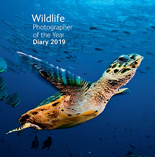 Wildlife Photographer of the Year Pocket Diary 2019 (Wildlife Photographer of the Year Diaries) por Natural History Museum