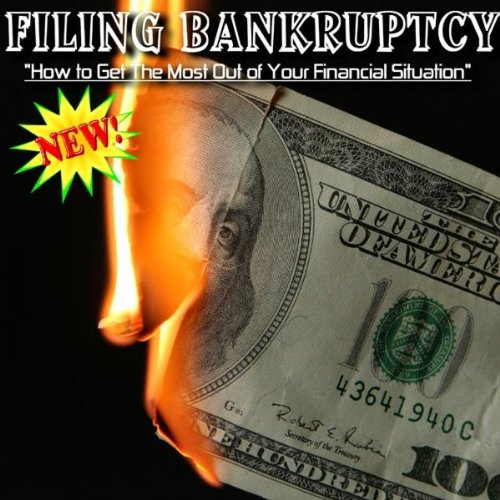 Filing For Bankruptcy - The New 2005 Law And How The Federal Court System Works