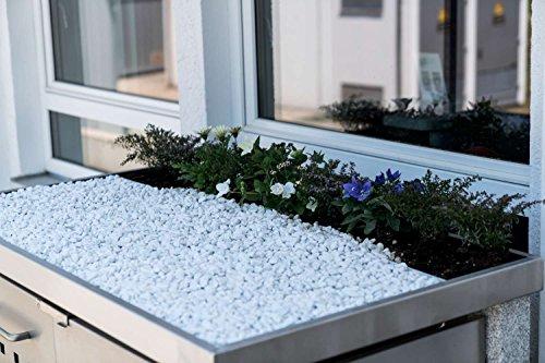 Mülltonnenbox Pflanzdach 4×4 Design Edelstahl 240 Liter 4 Mülltonnen - 5
