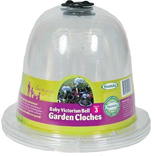 Hochbeet Hochbeet-Gärtnern Monat