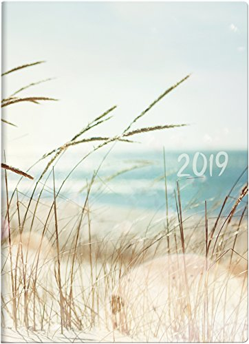 Brunnen 107311503 Taschenkalender Modell 731 15, 2 Seiten = 1 Woche, 100 x 140 mm, Grafik-Einband Strand, Kalendarium 2019