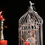 #7: White Bird Cage with Floral Vine (Set of 2)