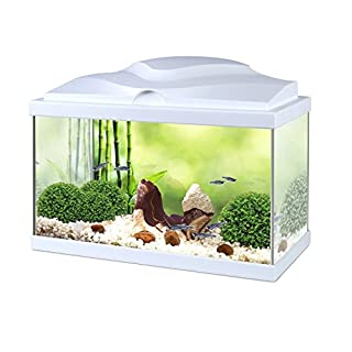 Askoll Aquarium Aqua 20 White 40 x 20 x 31 with LED and Filter 17 Litres