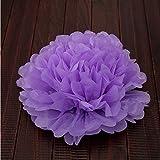 ANKKO 10 Stück Seidenpapier Ball Pom-Pom Papierblumen Hochzeit Party Dekoration, Lila