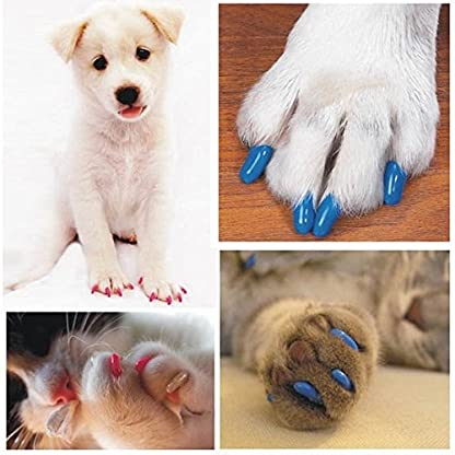 Qiao Niuniu New 20Pcs/Lot Colorful Soft Pet Dog Cats Kitten Paw Claws Control Nail Caps Cover #apowu522# (color: Red… 10