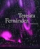Teresita Fernández: Wayfinding