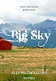 Big Sky (New Horizons, Book One)
