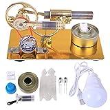 MRKE Stirlingmotor Stirling Engine Bausatz Stirling Engine Motor Model Kit mit Birne Geschenk für Stirling Modell Liebhaber