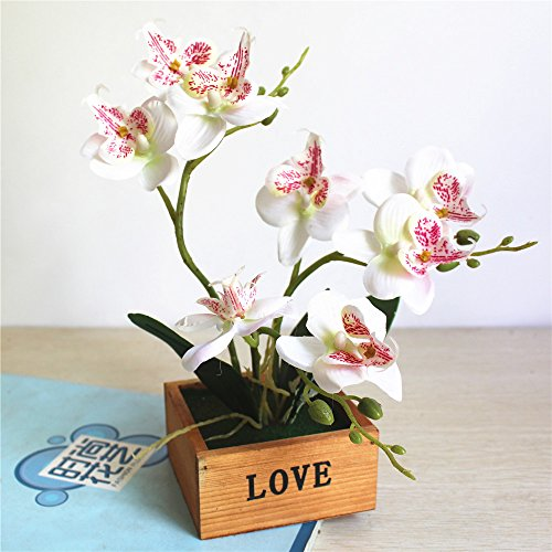 LIXIAOXIN Butterfly Orchid Bonsai Simulation False Schmuck Deko Weiß