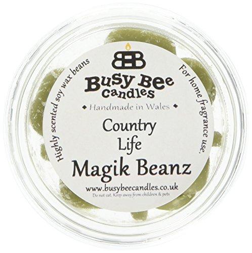 Scheda dettagliata Busy Bee Candles Magik Beanz Country Life, Colore: Verde, Confezione da 6
