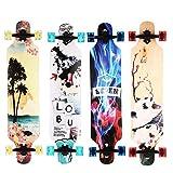 ZEARO Scooter Ville Enfant Cruiser Skateboard Freestyle Panneau d'autoroute en bois Motif Glace et feu