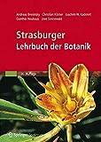 Strasburger - Lehrbuch der Botanik - Andreas Bresinsky, Christian Körner, Joachim W. Kadereit, G. Neuhaus, Uwe Sonnewald