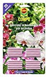 Compo, Concime in Bastoncini per Orchidee, Fino a 3 Mesi di nutrimento, 20 Pezzi, 0.5x14.4x24.3 cm